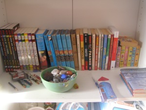 Bone, Diary of A Wimpy Kid, The Hardy Boys, Gordon Korman, Gary Paulson.